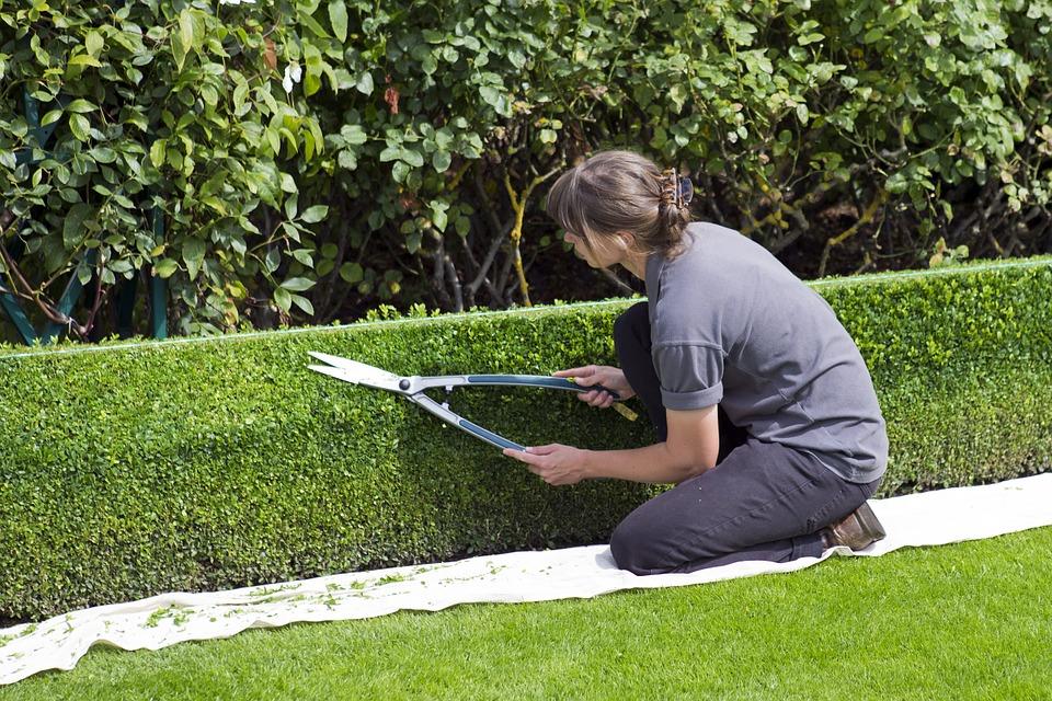 Les précautions à prendre lorsque vous faites du jardinage