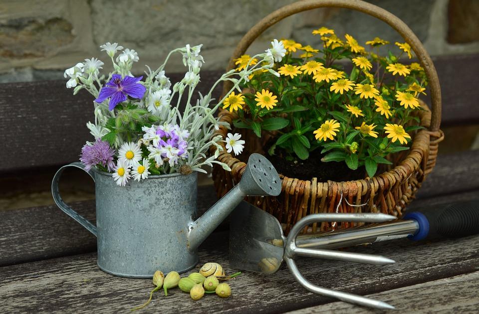 Quels sont les outils du jardinier ?